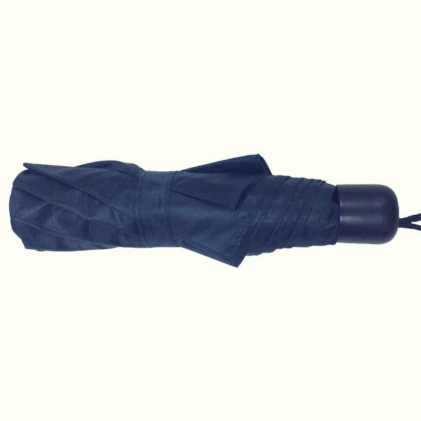 One Dolar Give Away Umbrella
