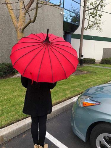 Pagoda Style Rain Umbrella